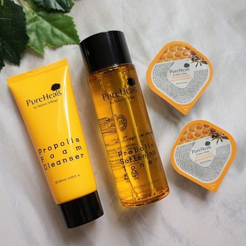 New post is UP on the blog! It's @pureheals_id Propolis line: foam cleanser, softening toner, and sleeping mask. Read the review here 👉🏼 bit.ly/purehealspropolis or link on bio 🐝...#mrshidayahpost #mrshidayahreview #purehealsgrandlaunching #purehealsevent #clozetteid #skincarekorea #purehealspropolis