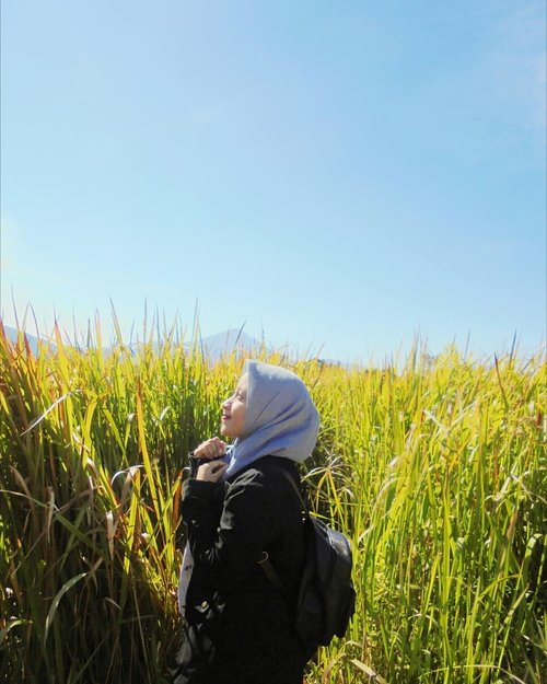 God has a planTrust it, live it and enjoy it🌞⛅🌻🌼••••#RatnasasDiary #ClozetteID #OotdHijab #BandungBanget #ExploreBandung #Ootd #Hijaber #DailyHijab #BandungKotaKembang #TamanLembahDewata #Travel #Lembang #Bandung #Hijab #HijabBlogger #Hijaber