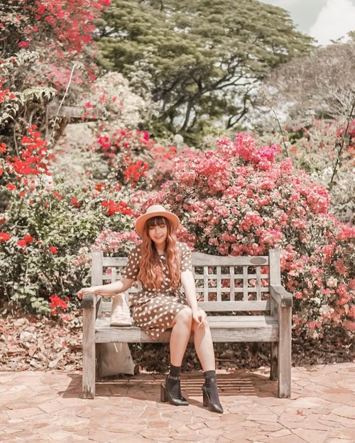 Strolling around a large garden in Singapore, Botanic Garden and found this super pretty spot 💖💖🌺🌺 . . 📷 @williamiskandar . . . . . #singapore #visitsingapore #botanicgarden #wheninsingapore #travel #clozette #clozetteid #passionmadepossible