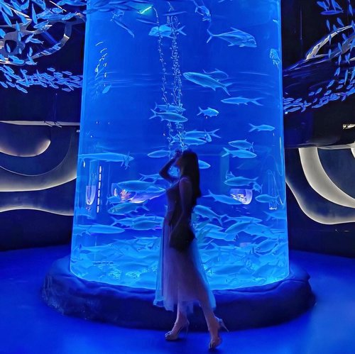 """Throwback to the time when I feel like a #Mermaid 🧜🏻♀️ whilst in awe exploring @jakartaaquarium and listen to the iconic """"Under The Sea"""" 🦀🐠🐙🐬🐡 Truly mesmerizing 🤍.....#underthesea #jakartaaquarium #placetogojkt #pearlofthesouthsea #explorejakarta #outfitoftheday #ootd #inspiration #womenfashion #fashionistas #elegant #instastyle #beautyenthusiast #photooftheday #beauty #makeup #fashiongram #beautyinfluencer #asianblogger #clozetteid #stylediaries #얼짱 #인스타패션 #패션스타그램 #오오티디"""
